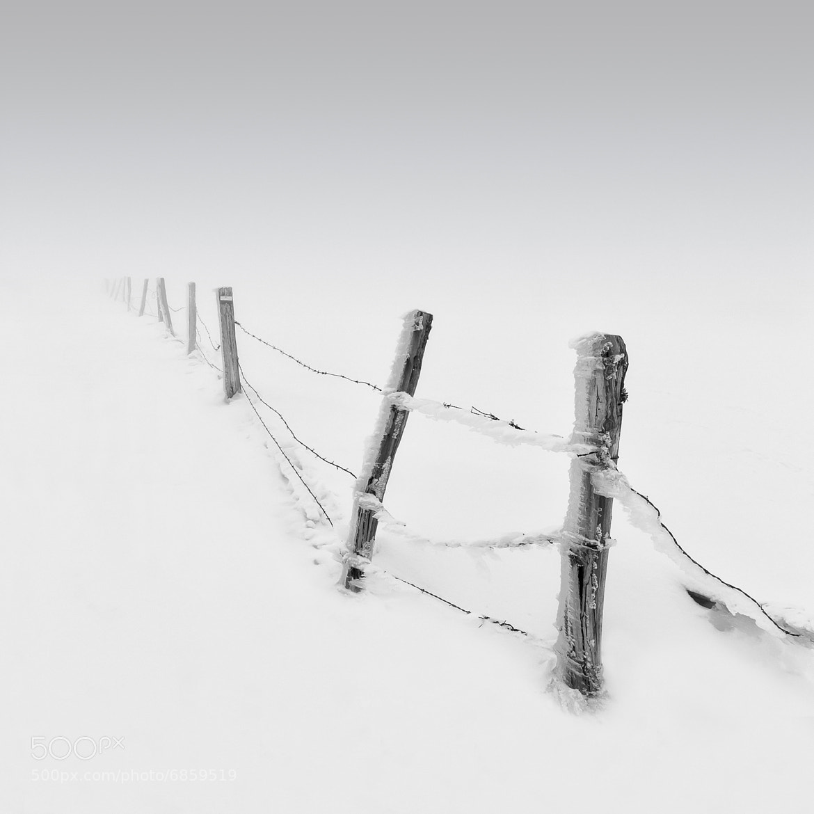 Photograph IceWire by Michael Diblicek on 500px