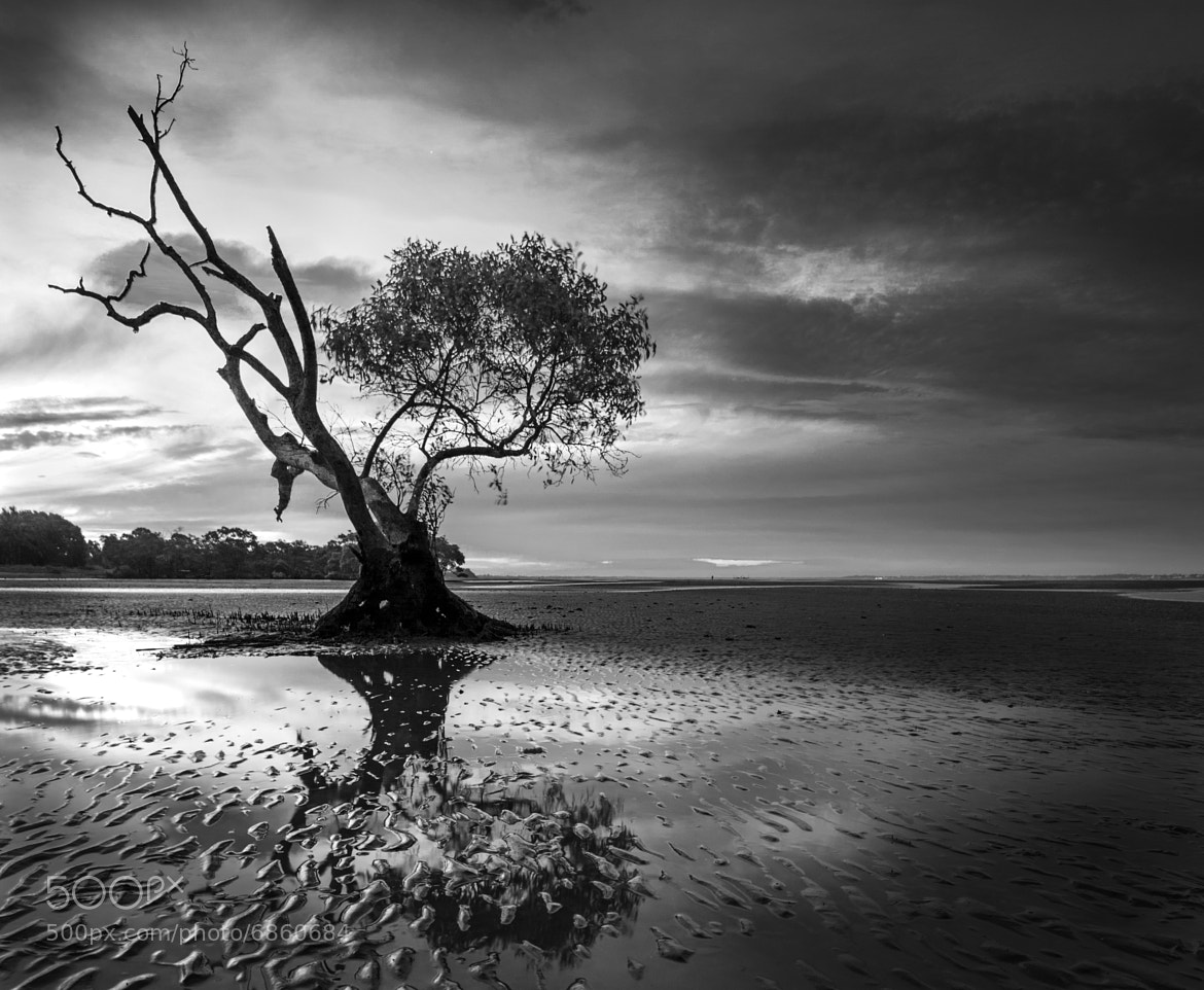 Photograph Nudgee Beach by Troy Steele on 500px
