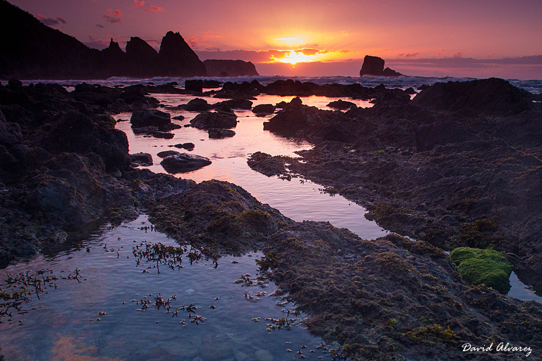 Photograph The sun sets in the rocky beach by David Alvarez on 500px