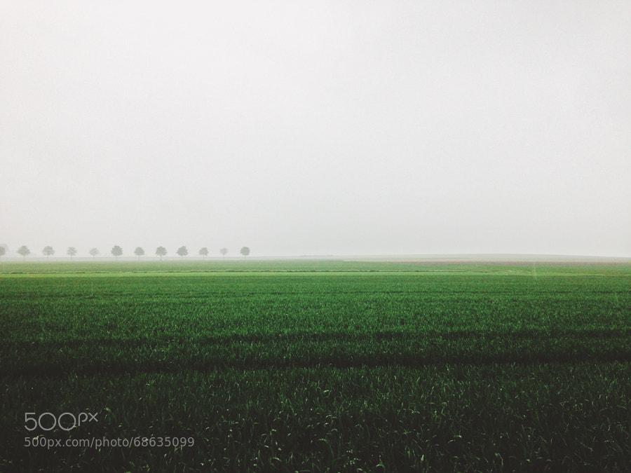 Photograph Spring landscape by Jan Kampling on 500px