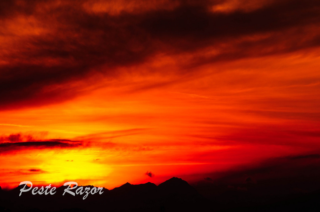 Photograph Red Sunset by Peste Razor on 500px