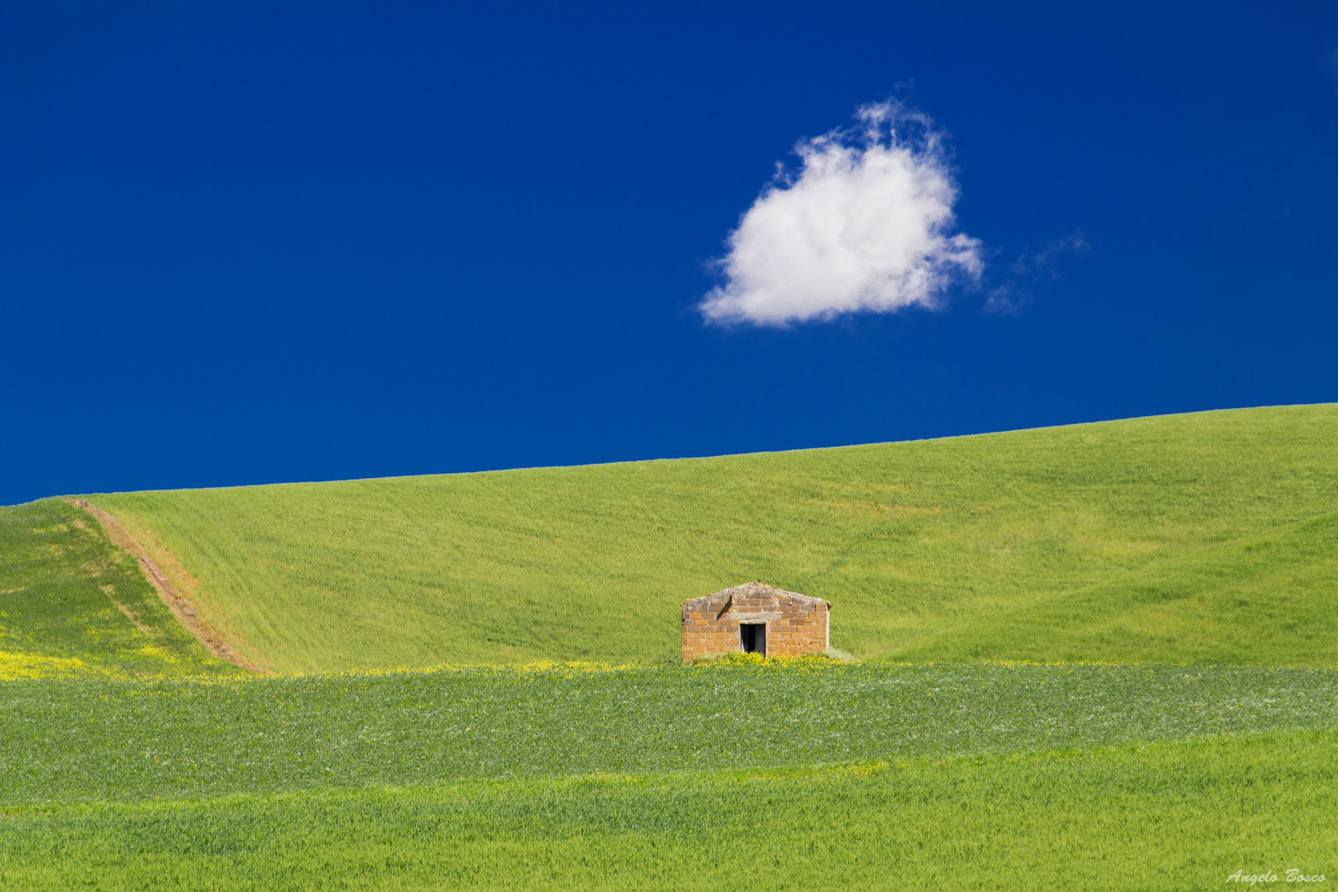 Photograph Green and Blue by Angelo Bosco on 500px