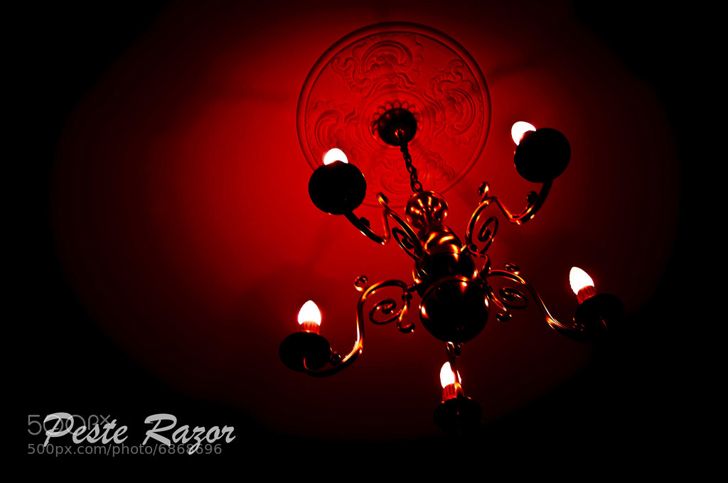 Photograph Red Light by Peste Razor on 500px