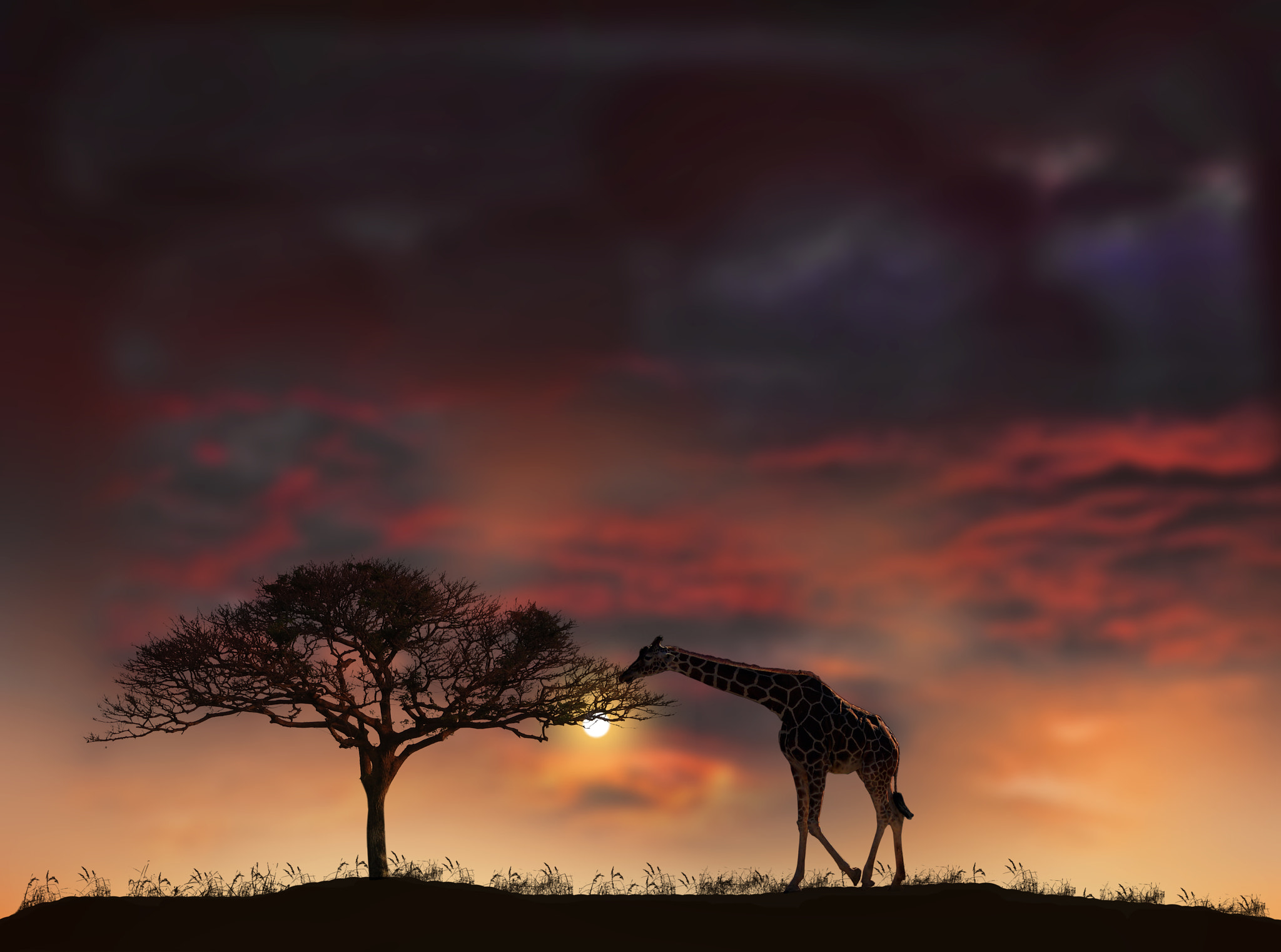 Photograph 2200 by peter holme iii on 500px