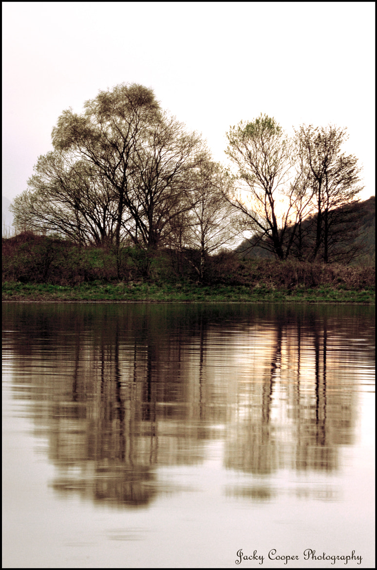 Photograph Trees....Loch Leven by Jacky  Cooper on 500px