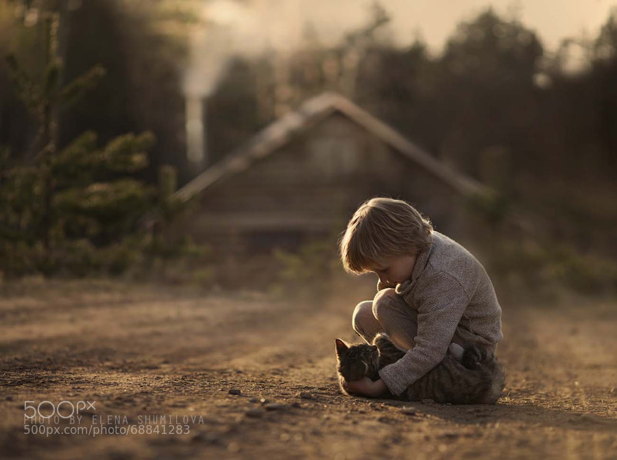 Photograph *** by Elena Shumilova on 500px