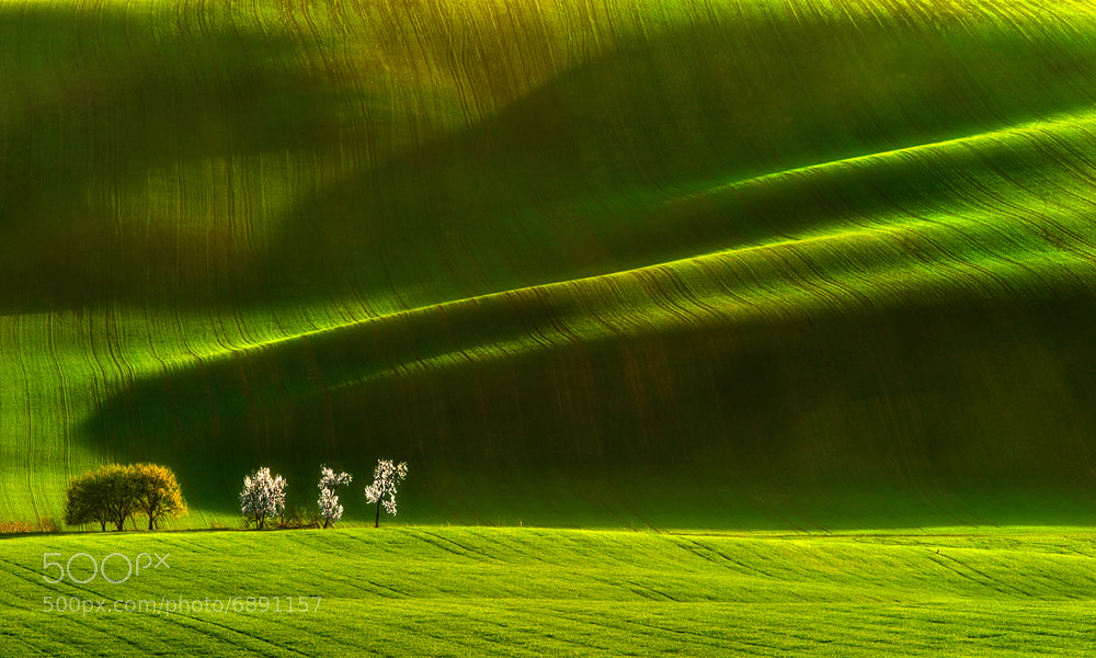 Photograph Moravian Ladies... by Pawel Kucharski on 500px