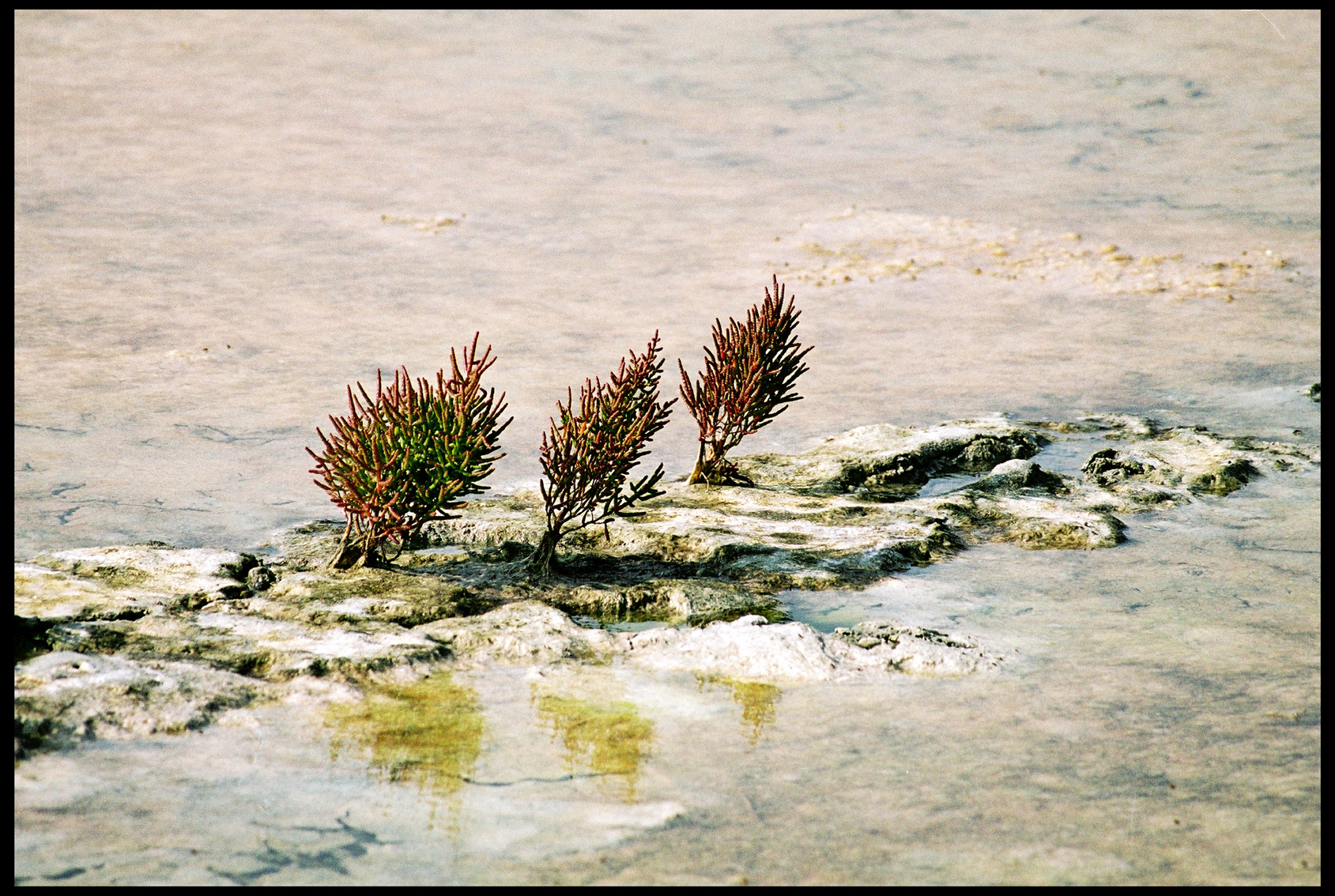Photograph Les salines 10 by Gilbert Janssens on 500px