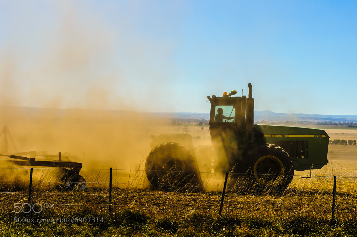 Photograph Work Horse by i500 ... on 500px