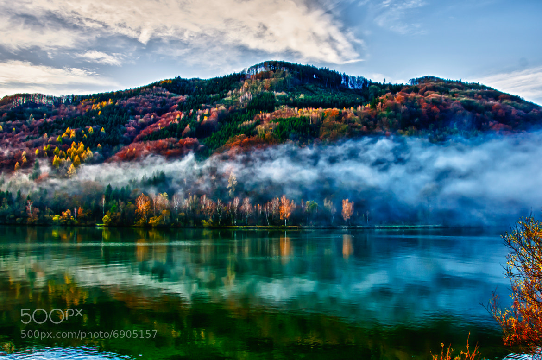 Photograph Herbst an der Donau ! by Leo Pöcksteiner on 500px