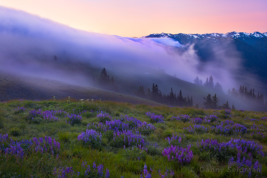 Photograph Mountain Fog by Danny Seidman on 500px