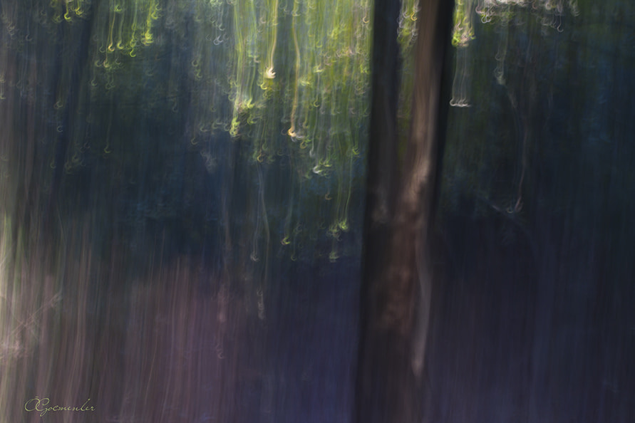 Photograph hook by ömer göçmenler on 500px