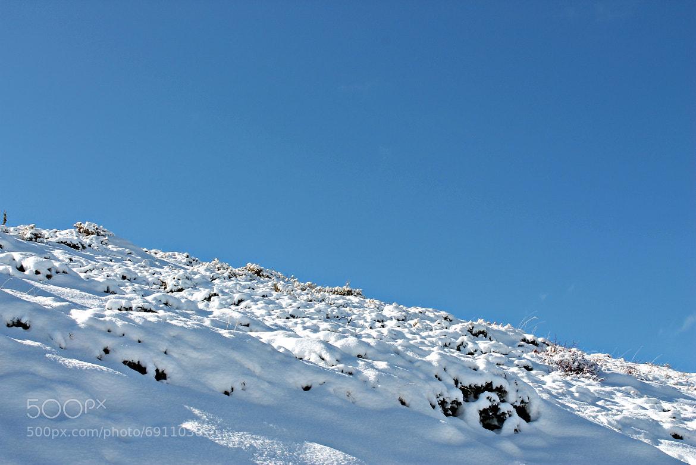 Photograph Snow by José C. Sánchez on 500px