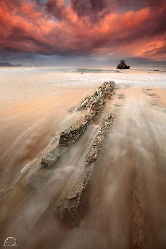 Photograph GLORY MOMENTS III by Raquel de Castro on 500px