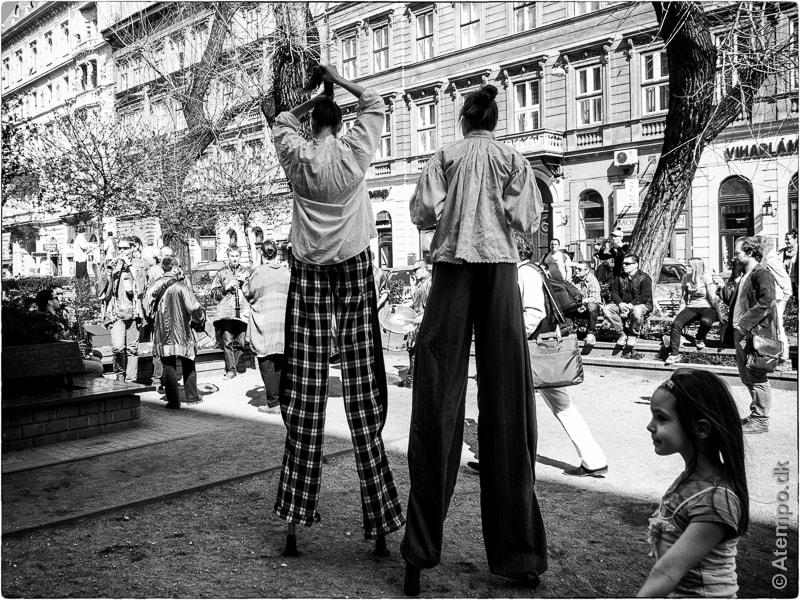 Spring Festival - Budapest Views