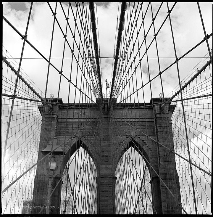 Photograph Brooklyn Bridge  by Carol Lee on 500px
