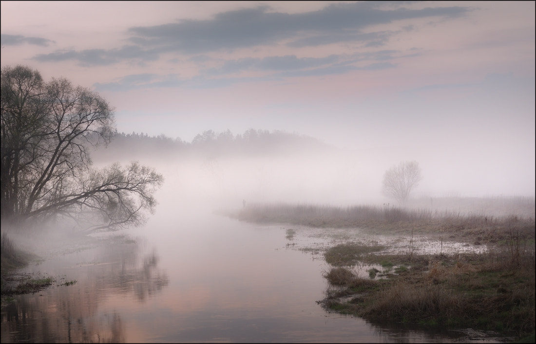 Photograph river in the fog by Zbigniew Sadowski on 500px
