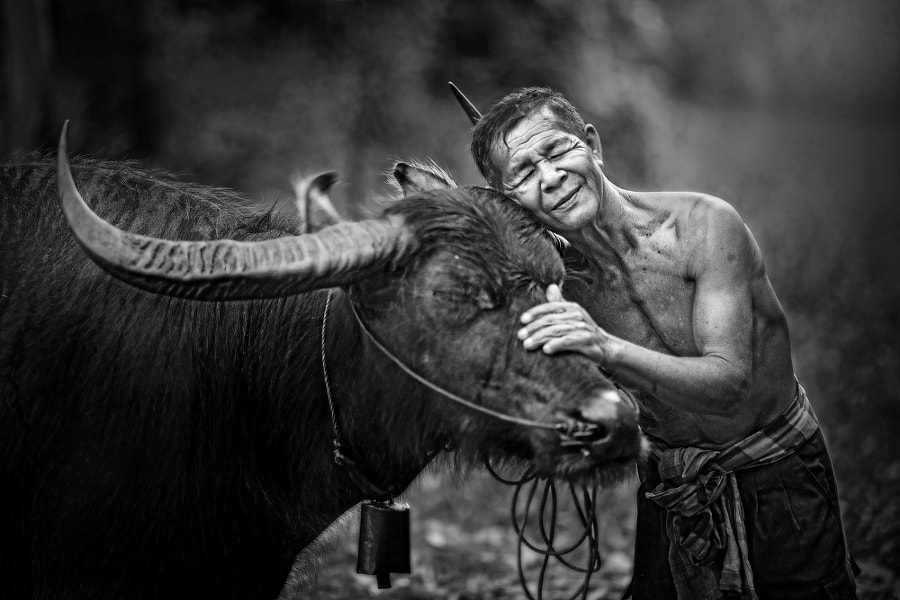 Photograph Love friend by sarawut Intarob on 500px