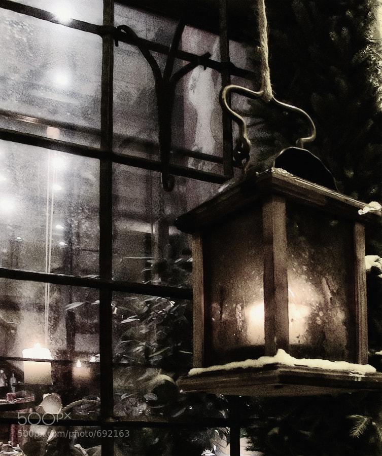 Photograph Light by Svetlana Suzi on 500px