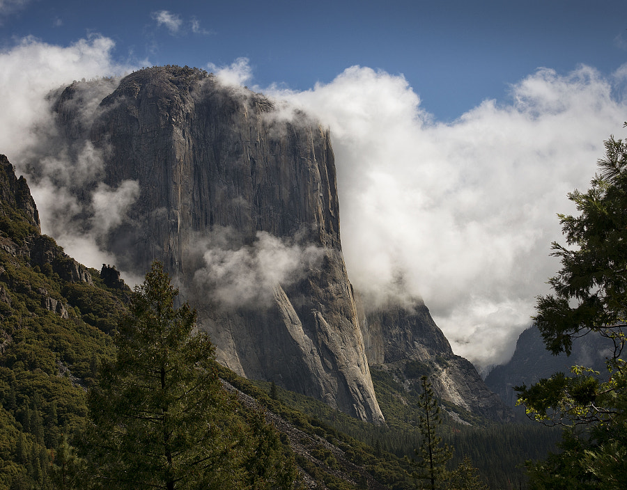 Photograph El Capitan by Torrey McNeal on 500px