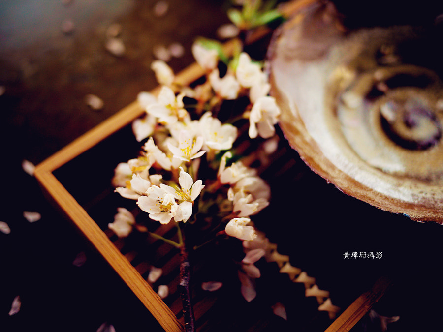 Photograph Blossoms Art 09 by Wei-San Ooi  on 500px