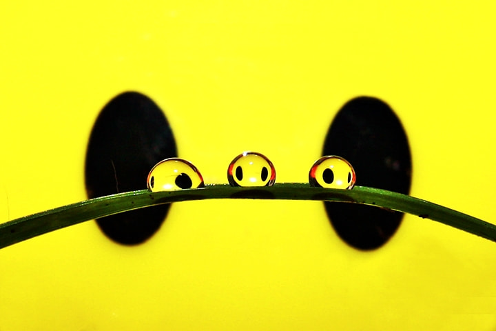 Photograph Three Aliens by Agus Nonot Supriyanto on 500px