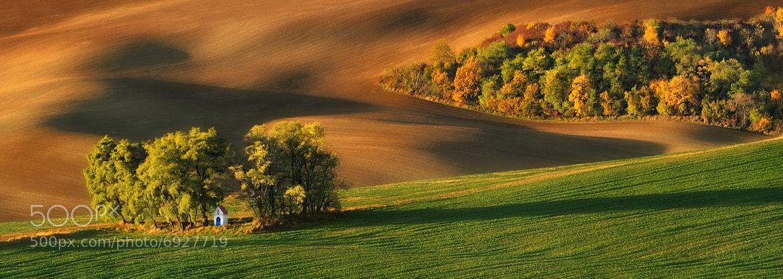 Photograph Autumn Painted by Tortoiseshell... by Pawel Kucharski on 500px
