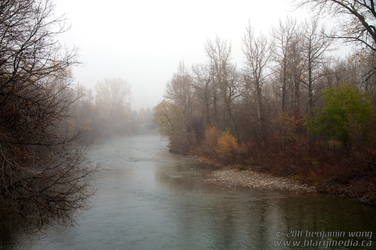 Photograph Foggy Elbow River by ben wong // blargmedia on 500px