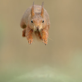 Incoming!!!! by Edwin Kats (EdwinKats)) on 500px.com