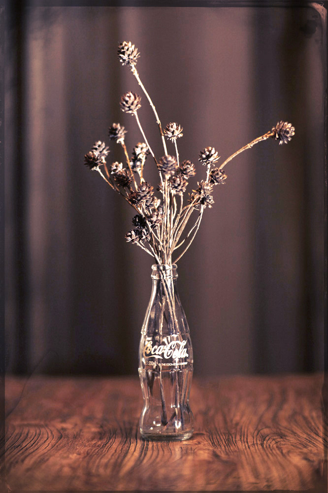 Photograph Dry Flowers by   Griff on 500px