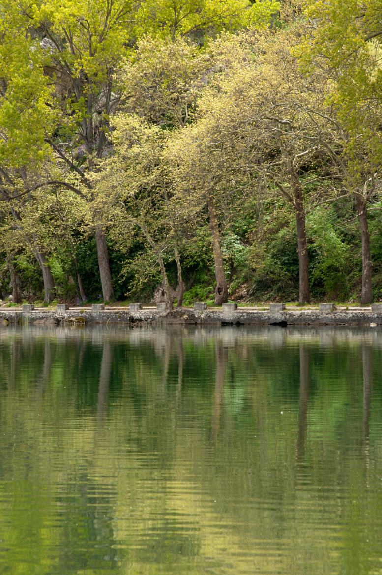 Photograph The reflection in green by Konstantinos Giannopoulos on 500px