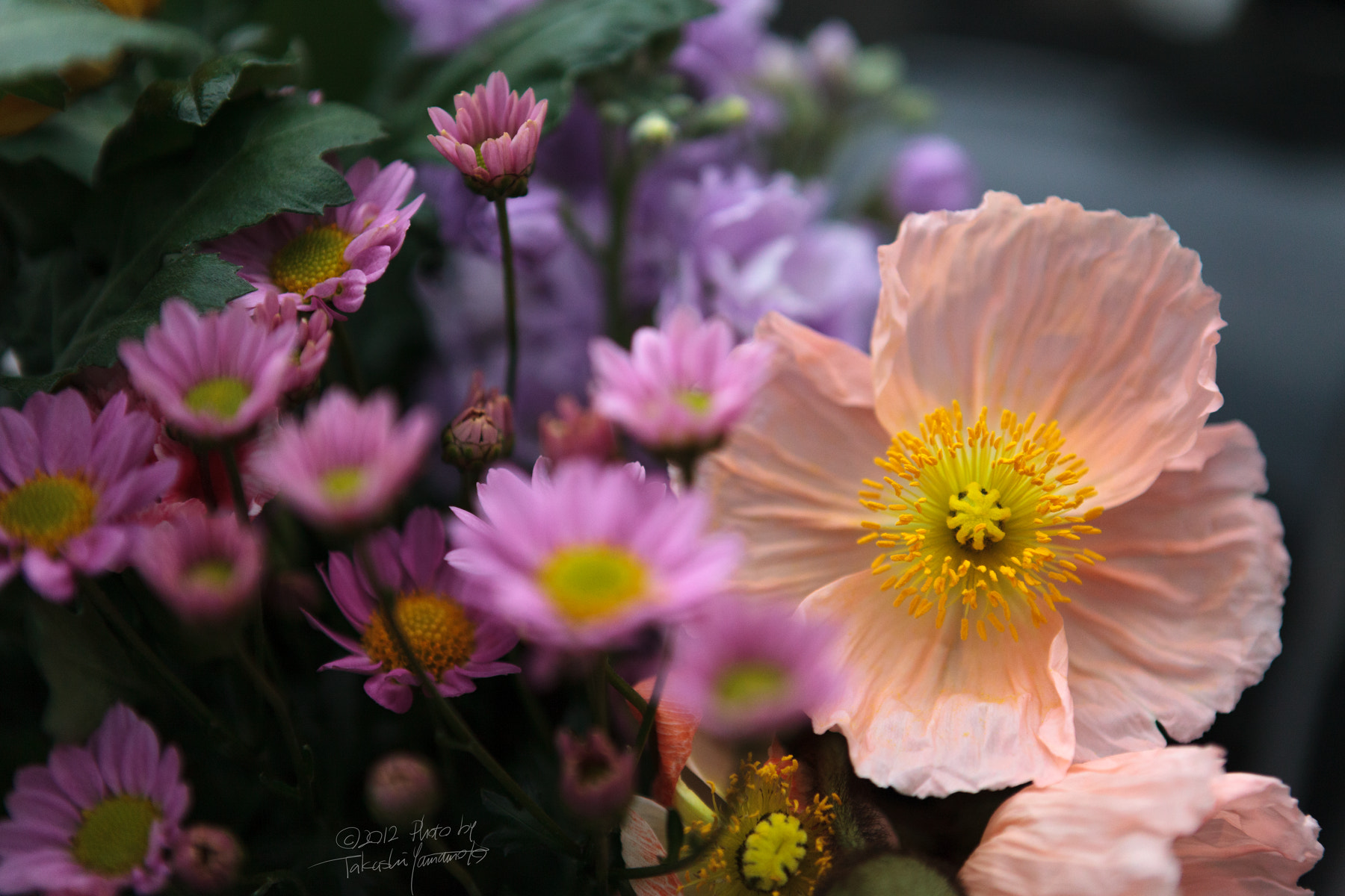 Photograph floral tribute by Takashi Yamamoto on 500px