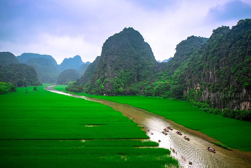 Rice field and river, NinhBinh, vietnam landscapes.