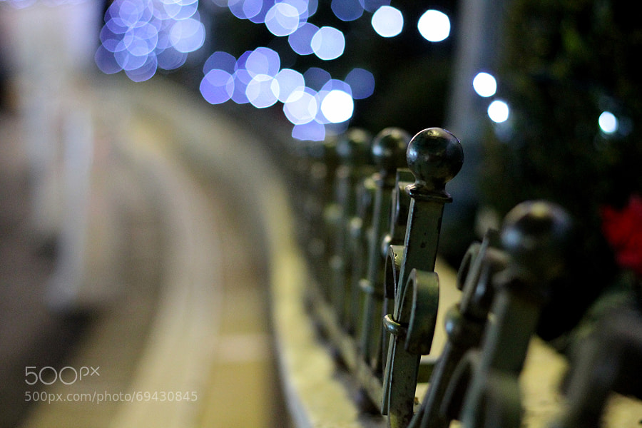 Bokeh detail by la claud