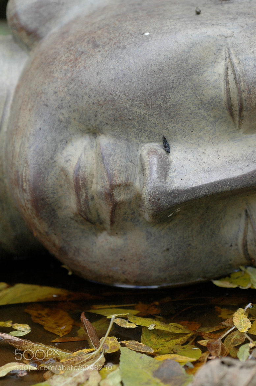 Photograph Lips of Buddha by Joe FreelancePhotographer on 500px