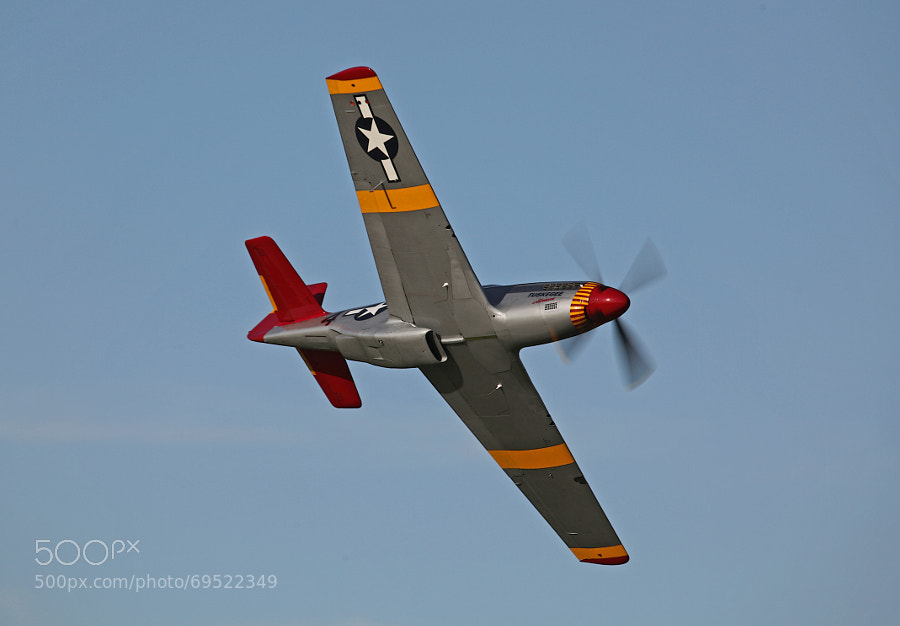 The Tuskegee Airmen consisted of an all African American Fighter Squadron that not only fought the Germans during World War II, they also fought racial prejudices in the Army they were serving.  The unit compiled a very commendable record of high achievement.  Their fighter aircraft were distinguished by their brightly painted red tails.