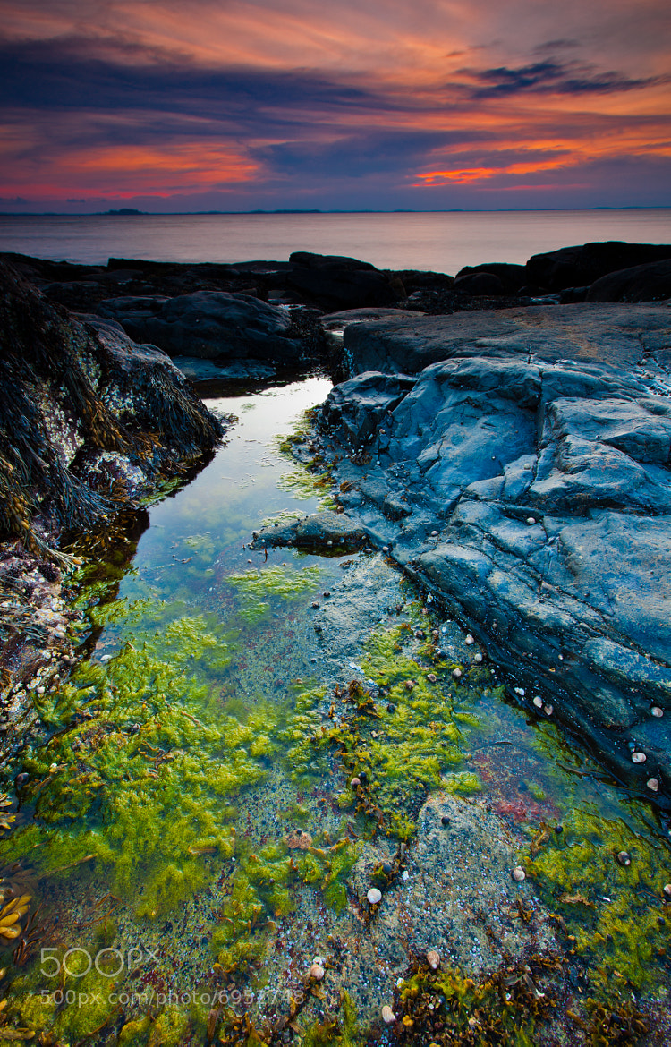 Photograph Sunset in Gloucester, MA by Rich Williams on 500px