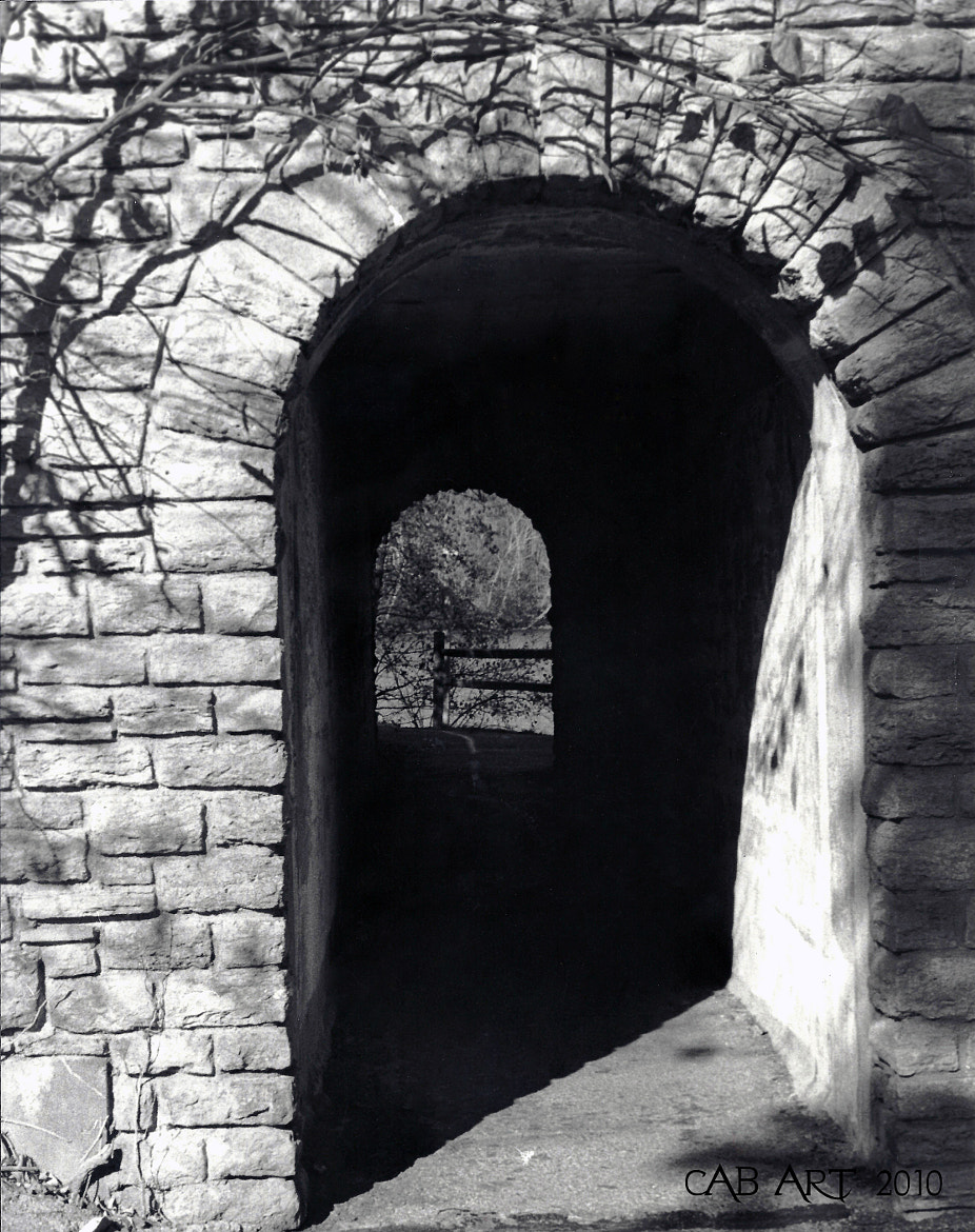 Photograph Dark Tunnel by Carrie Brausch on 500px