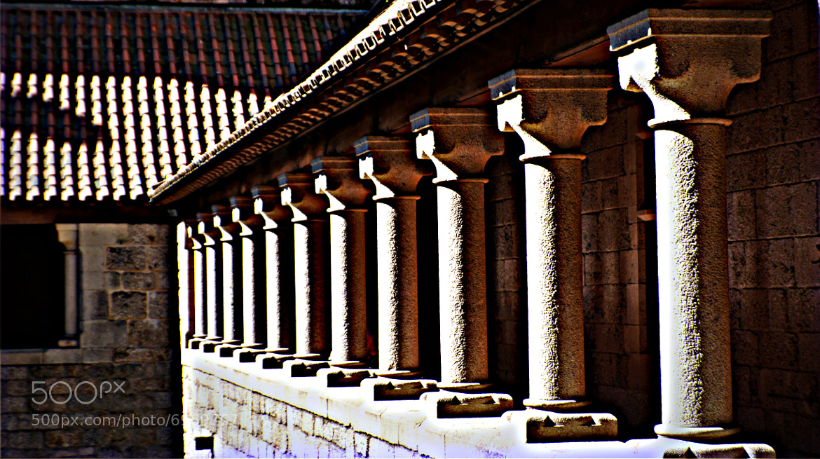 Photograph Columns by Hikergoer H.G. on 500px