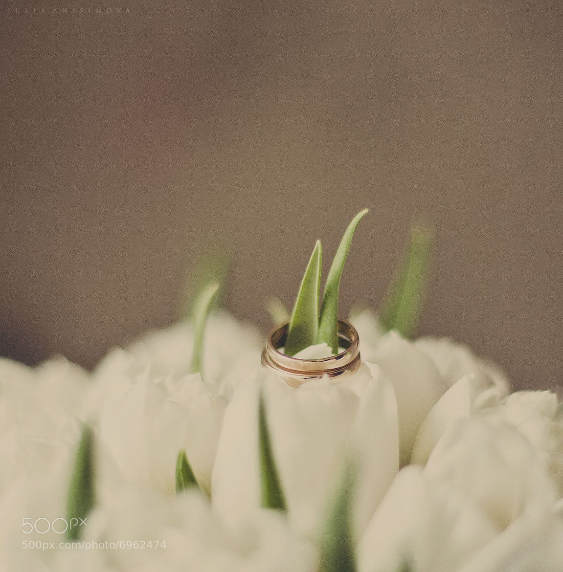 Photograph wedding by julia anisimova  on 500px