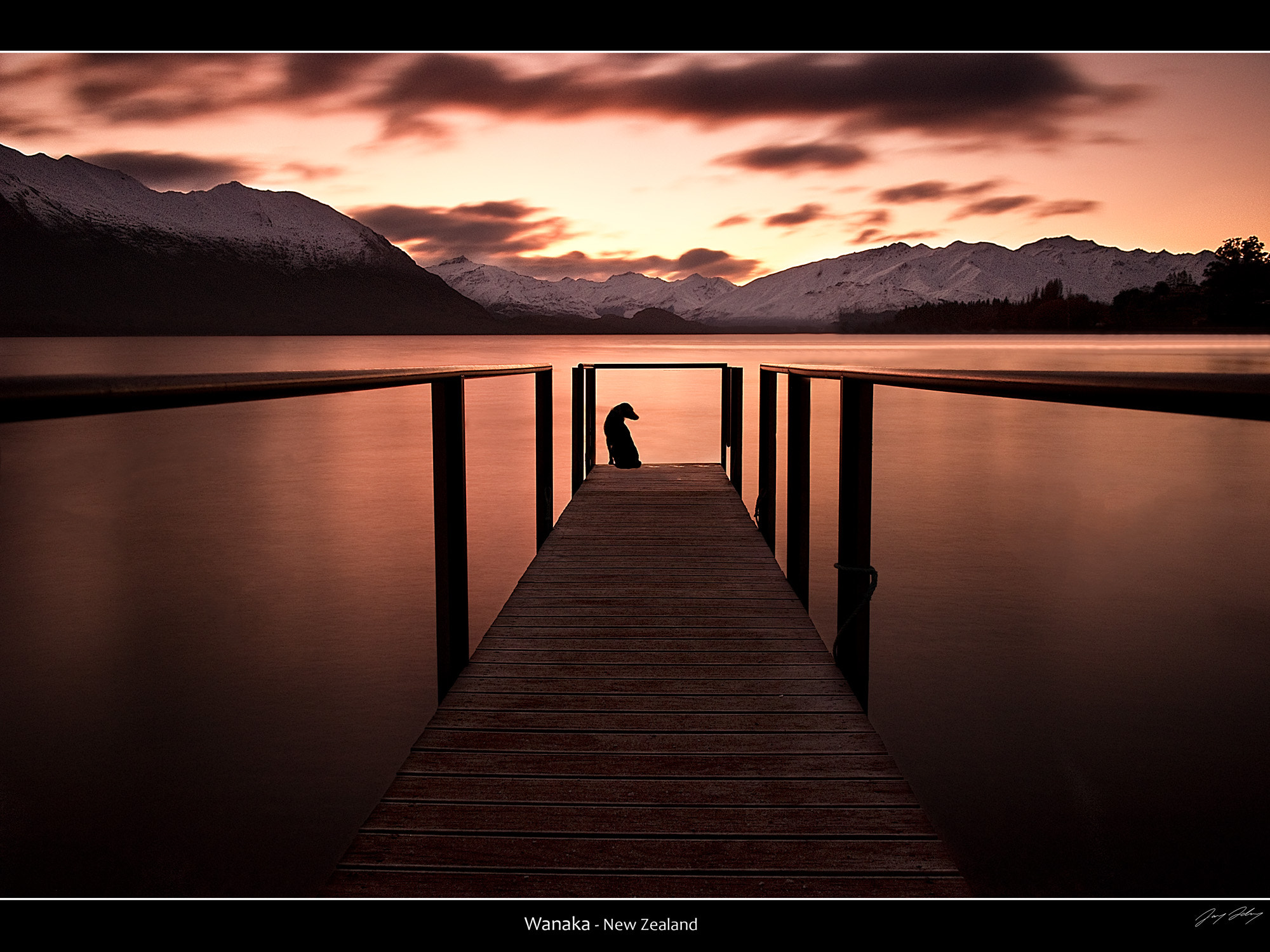 Photograph Wanaka Watch Dog by Jay Daley on 500px