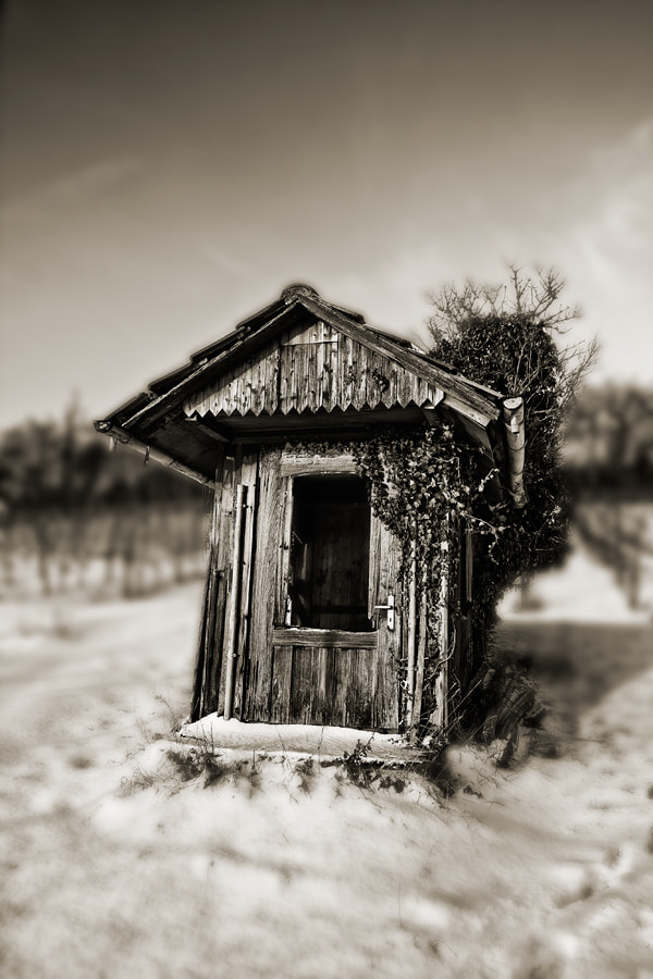 Photograph the shack by Mario Metzger on 500px