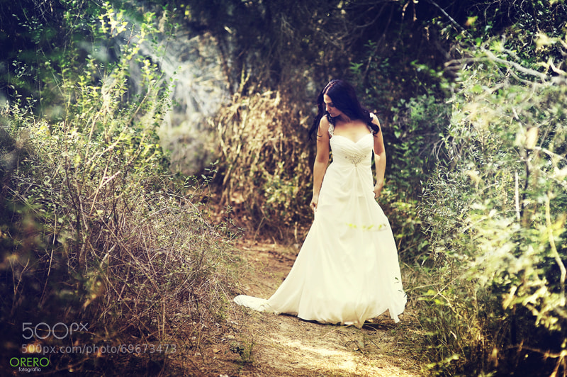 Bride's Dress in Forest