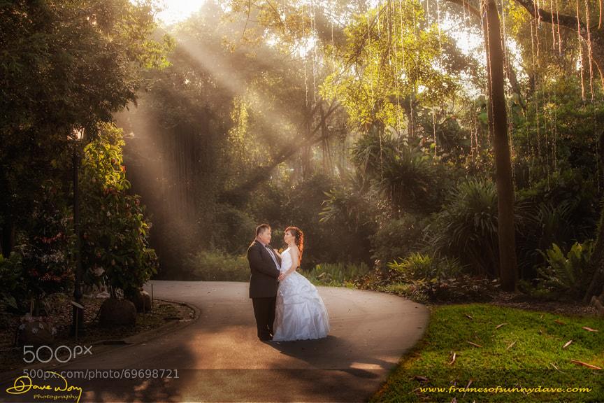 Harry & Tina Post Wedding Select