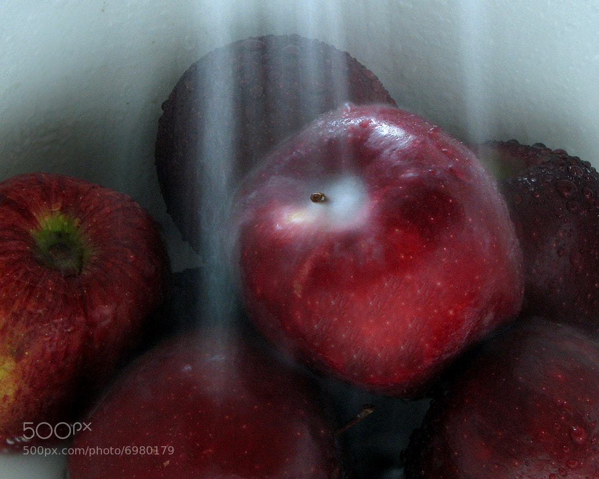 Photograph Washing Apples by Kimberly Kramer on 500px