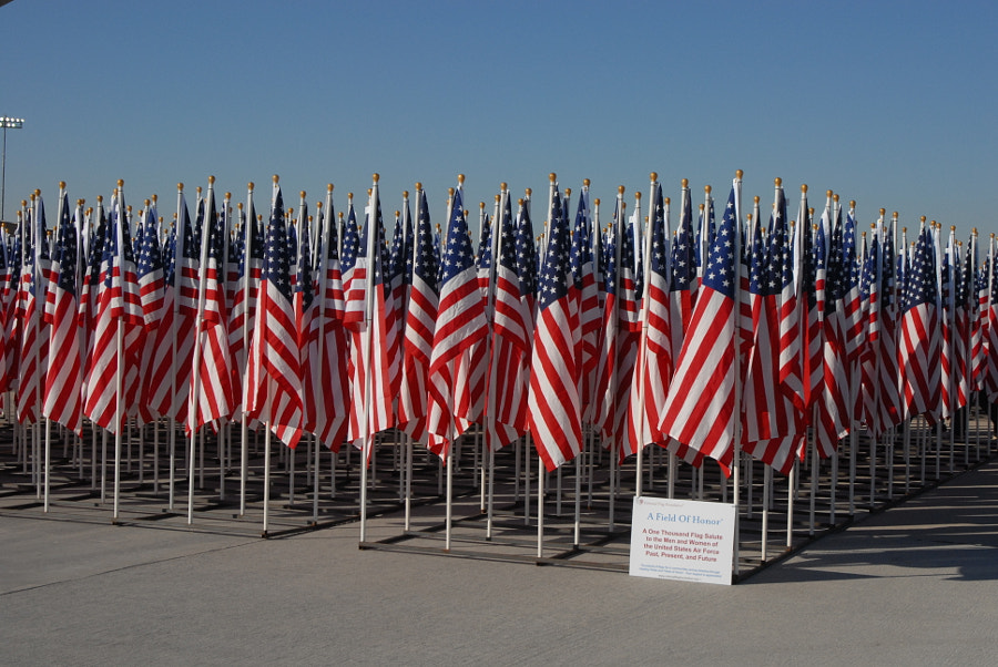 One Thousand American Flags
