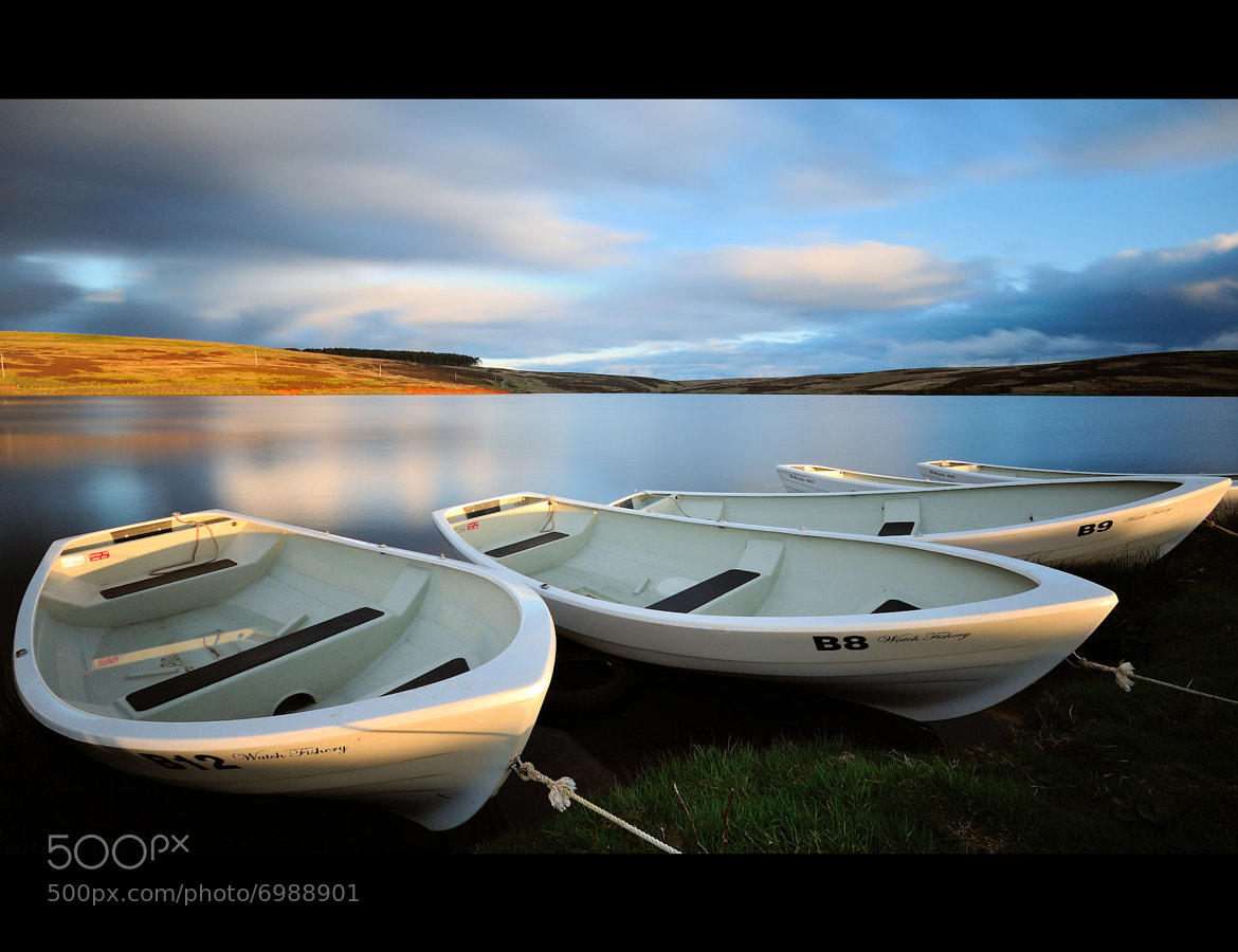 Photograph Evening light by Caledonia Caledonia on 500px