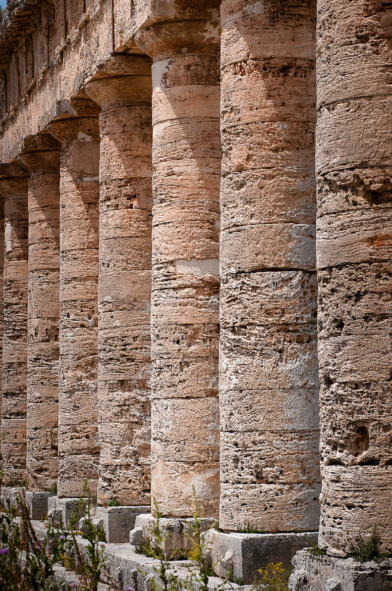 Photograph Temple of Segesta - Sicilia, Italy by Luca Brancolini on 500px