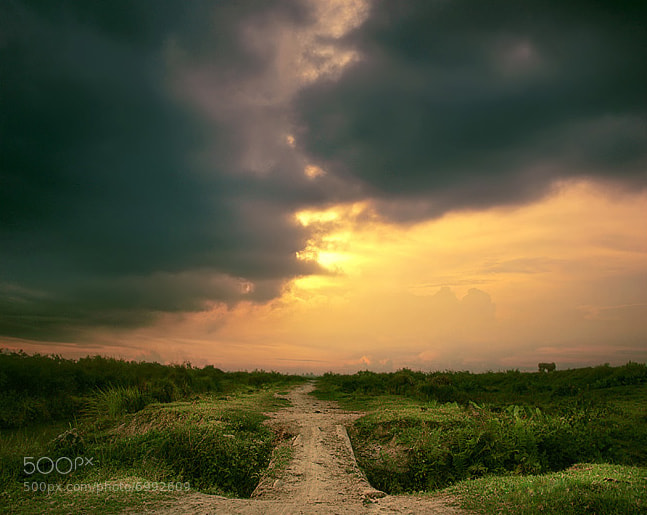 Photograph footpath by Teuku Jody  Zulkarnaen on 500px