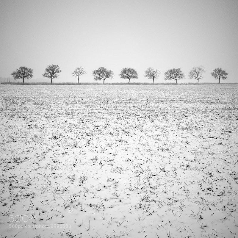 Photograph Nine #2 by Alain Baumgarten on 500px